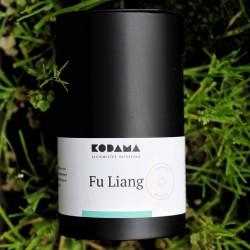 Fu Liang — Bio